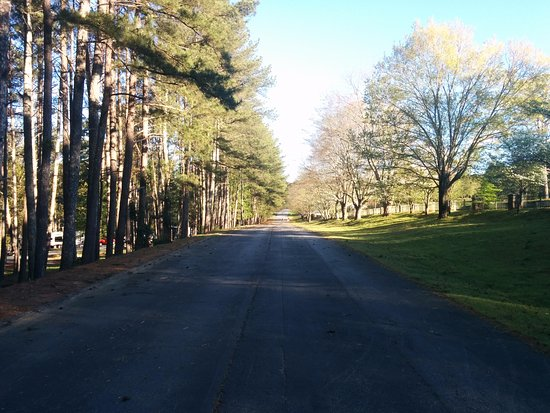 Stone Mountain Family Campground: Nice grounds