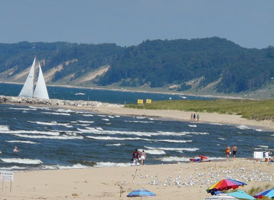 Saugatuck, MI: Great photo of the beach and dunes