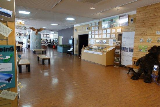 Shiretoko Nature Center: photo3.jpg