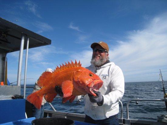 Kodiak, AK: Yelloweye Rockfish
