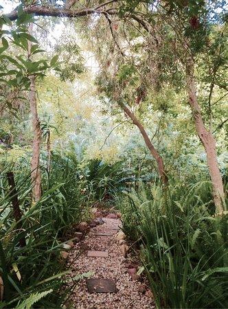 Augusta de Mist Country House: Garten & Cottage 😍