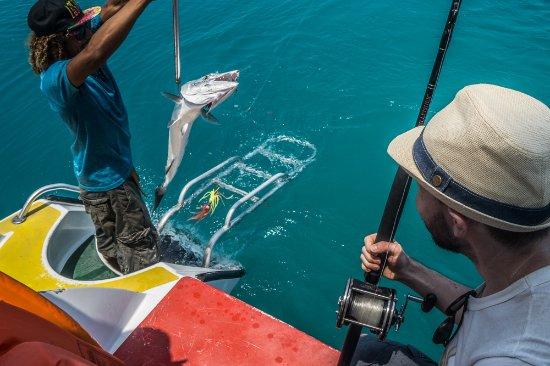 Caye Caulker, Belize: catch of the day