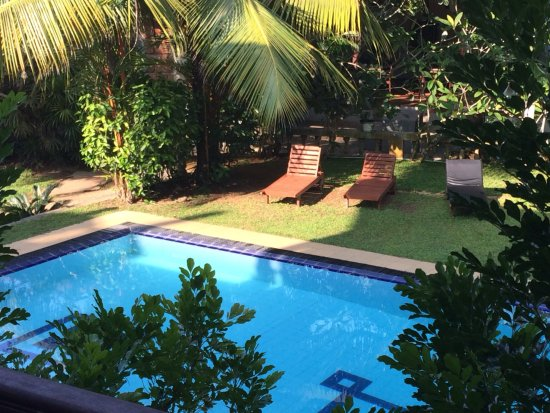 Panchi Villa: View from Room 1