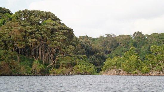 Omboue, Gabon: La lagune