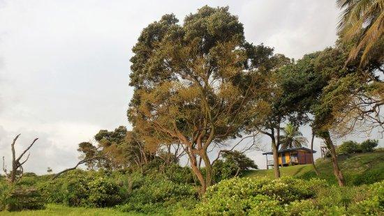 Omboue, Gabon: Vue sur la chambre