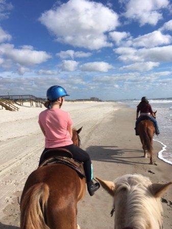 Happy Trails Walking Horses: photo0.jpg