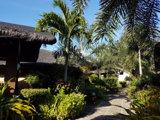 Kahuna Beach Resort and Spa: Well maintained grounds