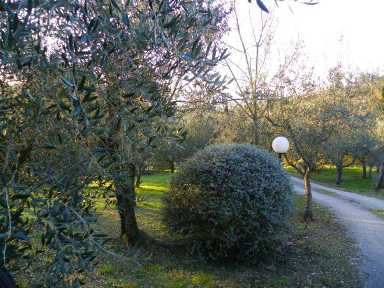 Villa Silvana Photo