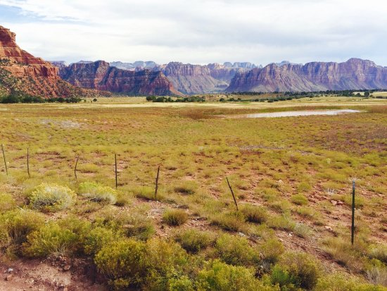 Virgin, UT: Our views of Zion
