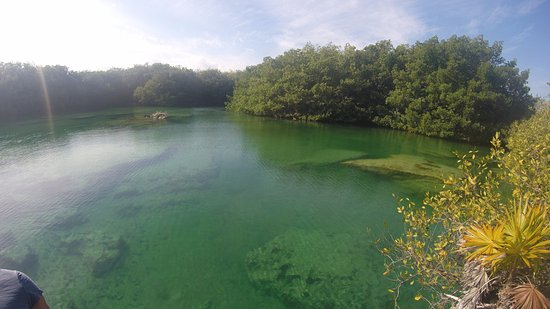 Puerto Aventuras, Mexico: Clear water on the cenote