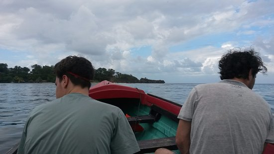Tropical Video Tours