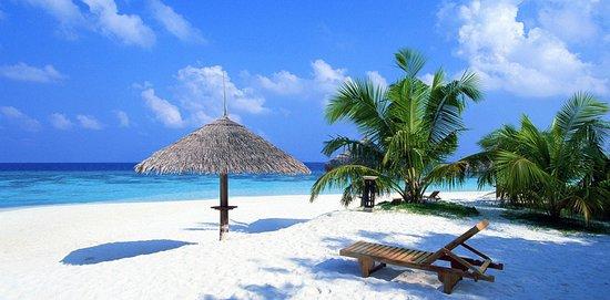 Goa beach private day tours