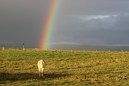 Deerness, UK: Moomin at the end of the rainbow!