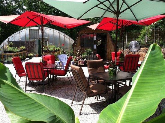 Buckingham, VA: Nirvana Coffee, Tea And Greenhouse At                         Yogaville     Thursday 's to Sunda