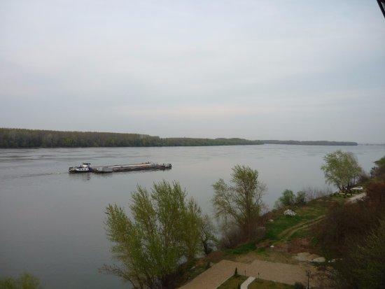 Vila Jugovo S: Вид на Дунай
