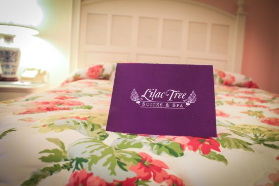 Lilac Tree Hotel And Spa