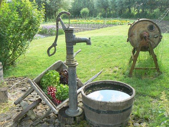 Le jardin des vertueux amiens 2017 ce qu 39 il faut savoir pour votre visite tripadvisor - Point d eau dans le jardin ...