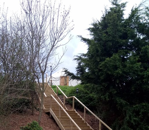 Edingworth, UK: steps to the yurt