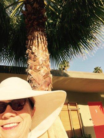 Desert Riviera Hotel: Living the life Desert Riviera Style  Day one