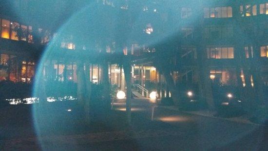 Hotel Palanga Restaurant  20170411 220721 large jpg. Hotel Palanga Restaurant   Picture of Hotel Palanga Restaurant