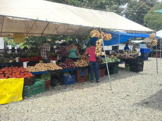 Farmers Fair (Ferias del Agricultor): You can't get any fresher than this...