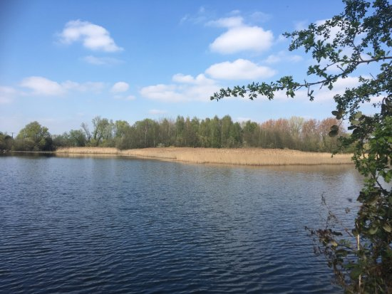 Paxton Pits Nature Reserve: Another southerly lake view.....