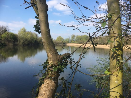 Paxton Pits Nature Reserve: .... and another lake view....