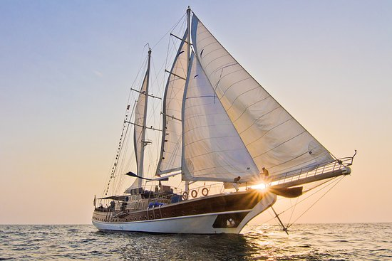 Prince of Sea Sailing Motor Yacht