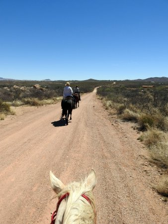 Tombstone Monument Ranch: Out on the trail through the desert