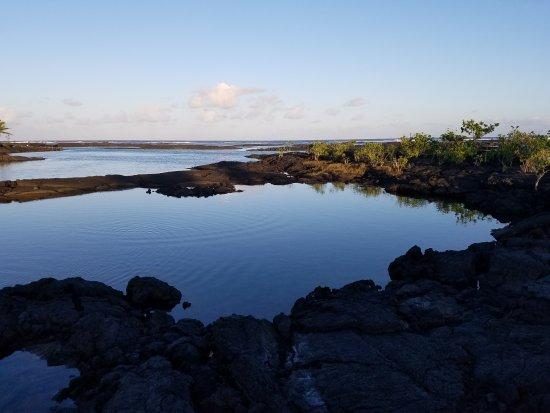 ปาฮัว, ฮาวาย: Kapoho Tide Pools