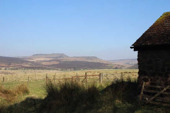 Longshaw Estate: Hills in the background.