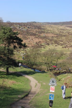 Longshaw Estate: Track leading to the Brook.