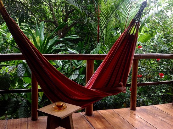 La Loma Jungle Lodge and Chocolate Farm: Plenty of hammocks for relaxing