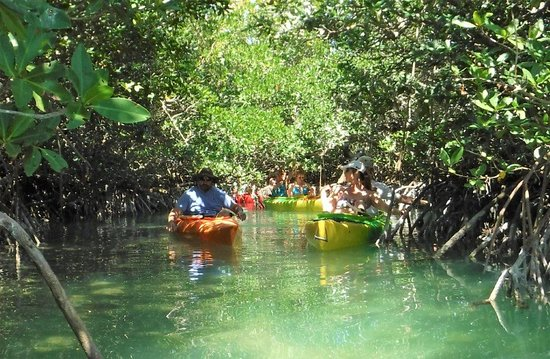 Summerland Key, FL: Florida Keys Paddleboards
