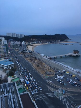 Pohang, Sydkorea: View from the 16th Floor overlooking the beach