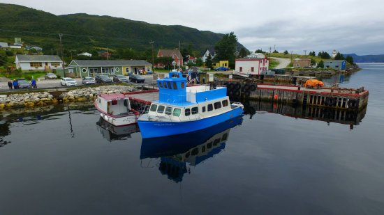 Woody Point, كندا: Lady Elizabeth I at the wharf in Woody Point.