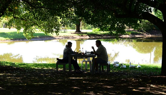 Wahgunyah, Australia: Lovely shaded eating areas.