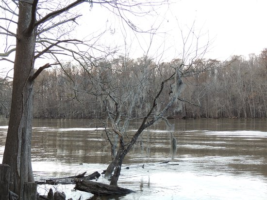 Jamesville, NC: The river at the bottom of the hill and beside Cypress Grill
