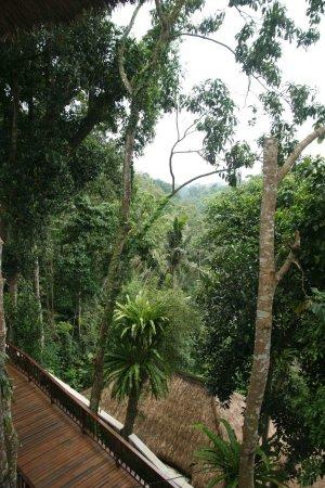 Natura Resort and Spa: FB_IMG_1491526663991_large.jpg