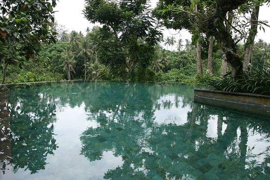 Natura Resort and Spa: FB_IMG_1491526705737_large.jpg