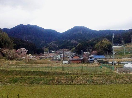 奈良県宇陀市大宇陀本郷の、のどかな集落。