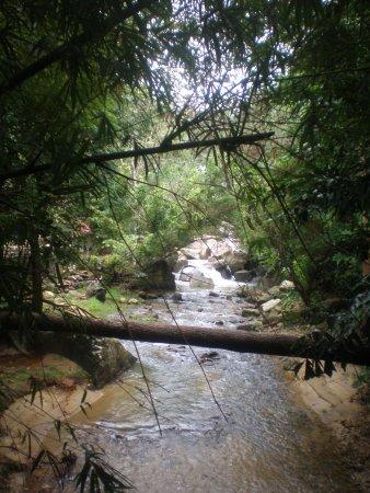 Chin Farm Waterfall: the stream runs away to the sea