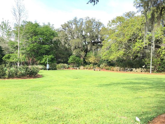 Stunning Botanical Gardens Picture Of New Orleans Botanical Gardens New Orleans Tripadvisor