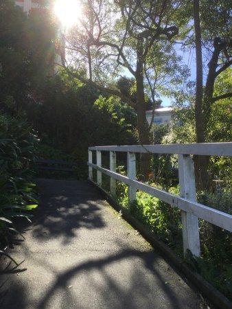 Oriental Terrace Zig Zag: a peaceful autumn walk past Joe's Place