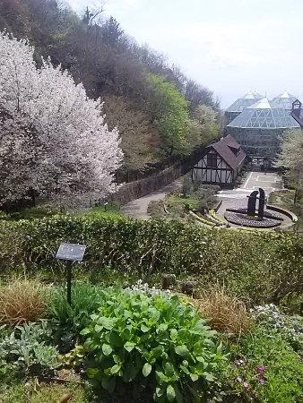 Kobe Nunobiki Herb Garden: DSC_2190_large.jpg