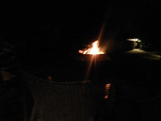 The Tall Trees Munnar: Daily Bon fire