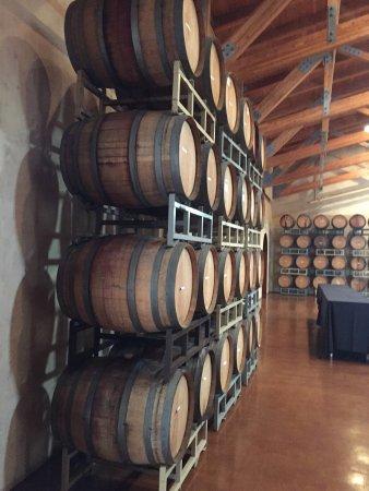 Jacuzzi Family Vineyards: photo1.jpg