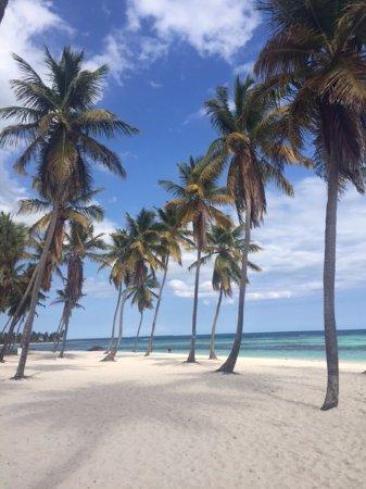 Bayahibe, Den Dominikanske Republik: Saona Beach