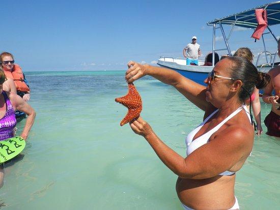 Bayahibe, Den Dominikanske Republik: Christine explaining how to hold the starfish