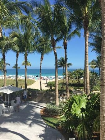 The St. Regis Bal Harbour Resort: Perfect setting!